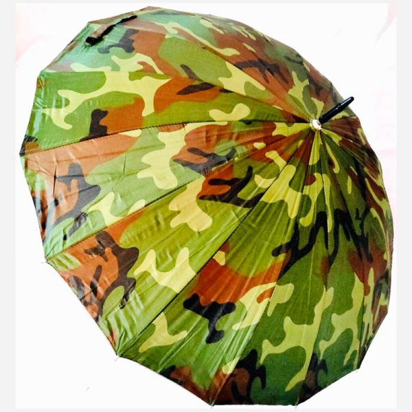 2 Fold Auto Umbrella